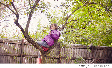 Little girl sitting on a tree and eating apple 46740327