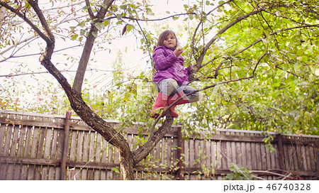Little girl sitting on a tree and eating apple 46740328