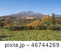 イモリ池の紅葉と妙高山 46744269