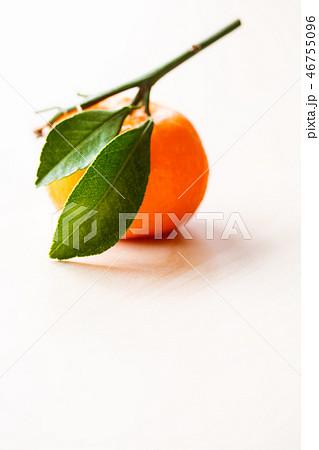 葉付き蜜柑 46755096