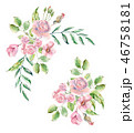水彩画 お花 フラワーのイラスト 46758181