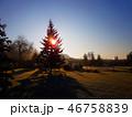 Beautiful morning sunrise 46758839