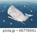 くじら クジラ 鯨のイラスト 46776041