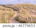 French landscape - Bretagne 46779653