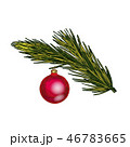 Fir tree branch with toy  46783665