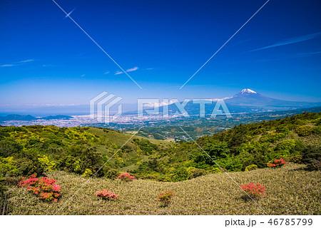 (静岡県)ツツジ咲く伊豆スカイライン道路から富士山を望む 46785799