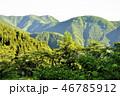 朝の奥多摩山地 三ノ木戸山 46785912