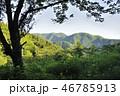 朝の奥多摩山地 三ノ木戸山 46785913