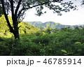 朝の奥多摩山地 三ノ木戸山 46785914