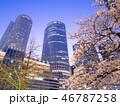 名古屋駅 JRセントラルタワーズ 夜桜の写真 46787258