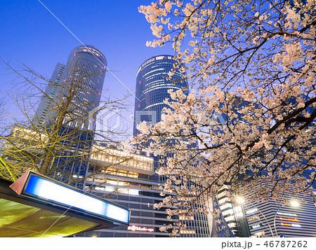 名古屋都市風景 名古屋駅前ロータリーと夜桜 46787262