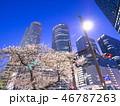 名古屋駅 JRセントラルタワーズ 夜桜の写真 46787263