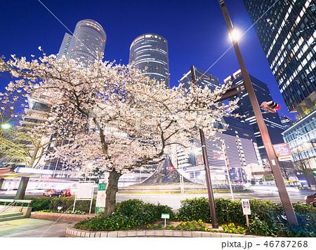 名古屋都市風景 名古屋駅前ロータリーと夜桜 46787268