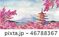 水彩画 ふじ フジのイラスト 46788367