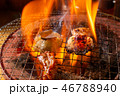 ホルモン ホルモン焼き 焼肉の写真 46788940