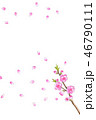 桃の花 水彩画 46790111