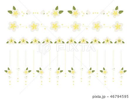 プルメリアの飾り罫 46794595