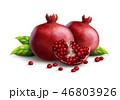 葉っぱ くだもの フルーツのイラスト 46803926