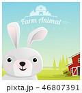 うさぎ ウサギ 兎のイラスト 46807391