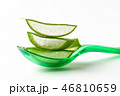 アロエベラ 葉 さぼてんの写真 46810659