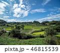 空 米 田畑の写真 46815539