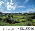 空 米 田畑の写真 46815540