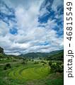 空 米 田畑の写真 46815549
