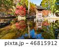 洞川温泉 龍泉寺 紅葉の写真 46815912