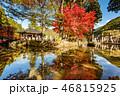 紅葉 秋 寺の写真 46815925