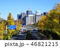 都会 町並み 紅葉の写真 46821215