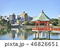 大濠公園 公園 池の写真 46826651