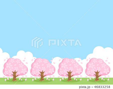 桜並木 46833258