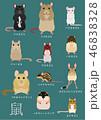 ネズミ 種類 一覧 46838328