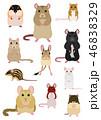 ネズミ 種類 素材 46838329