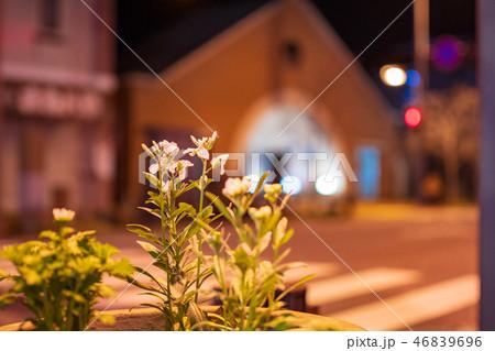 白壁の街柳井駅前通り夜景【山口県】 46839696