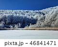 聖高原 霧氷 樹氷の写真 46841471