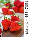 いちご イチゴ 苺の写真 46847851