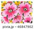 flowers19106pix7 46847902