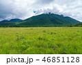 戦場ヶ原 男体山 自然の写真 46851128
