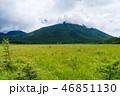 戦場ヶ原 男体山 自然の写真 46851130