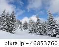 ゆき スノー 雪の写真 46853760