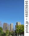 武蔵小杉 高層マンション マンションの写真 46859846