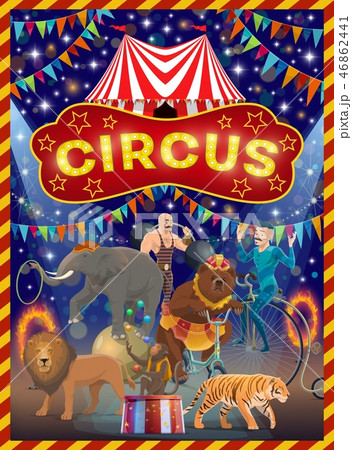Animals, acrobat and strongman on circus arena 46862441