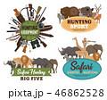 動物 狩り 狩のイラスト 46862528