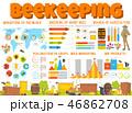 養蜂 はちみつ 蜂蜜のイラスト 46862708