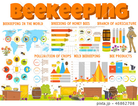 Beekeeping and honey bee products infographics 46862708