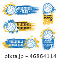 Volleyball sport game ball, trophy cup and whistle 46864114