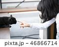 野良猫と触れ合う女性 46866714