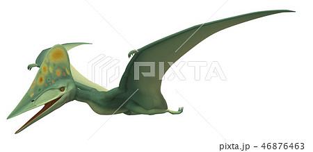 翼竜:トゥプクスアラのイラスト素材 [46876463] - PIXTA