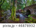 石橋 ブリッジ 橋の写真 46878932